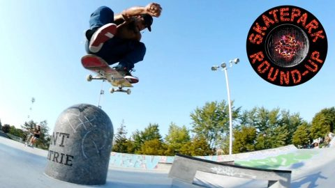 Skatepark Round-Up: DC Shoes | ThrasherMagazine