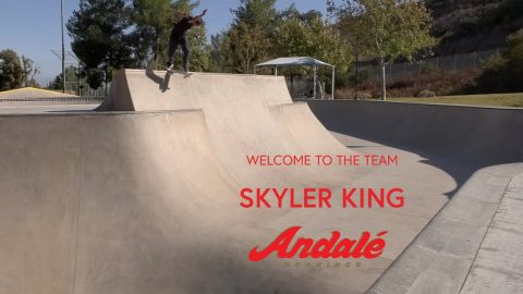 Skyler King - Welcome To Andale | Andale Bearings