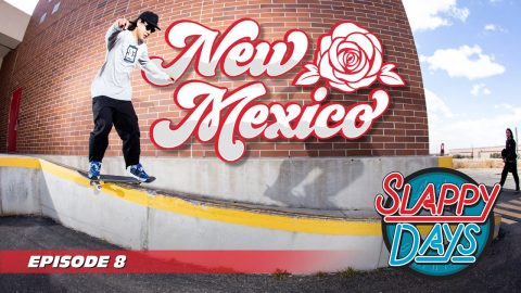 Slappy Days Albuquerque New Mexico | Andale Bearings