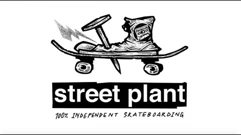STREET PLANT: Nailed | STREET PLANT
