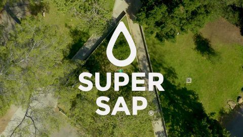 Super Sap Resin-7 Decks | Dwindle Distribution
