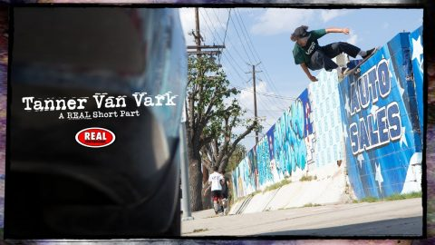 Tanner Van Vark : A REAL Short Part | REAL Skateboards