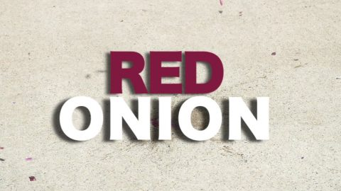 The Red Onion Video | TransWorld SKATEboarding - TransWorld SKATEboarding