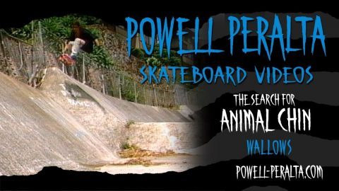 THE SEARCH FOR ANIMAL CHIN CH. 2 WALLOWS | Powell Peralta