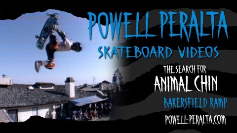 THE SEARCH FOR ANIMAL CHIN CH. 5 BAKERSFIELD RAMP | Powell Peralta