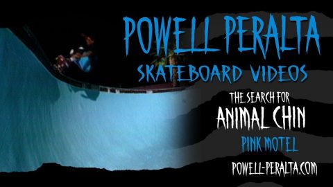 THE SEARCH FOR ANIMAL CHIN CH. 6 PINK MOTEL | Powell Peralta