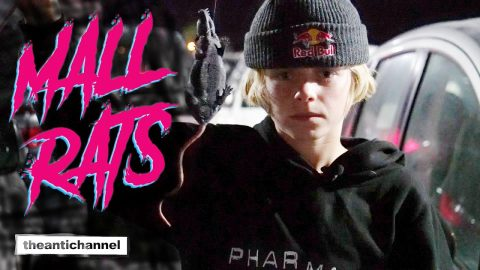"theantichannel /// ""MALL RATS"" 