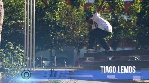 Tiago Lemos Banger for the BLUES | Andalé Bearings - Andale Bearings
