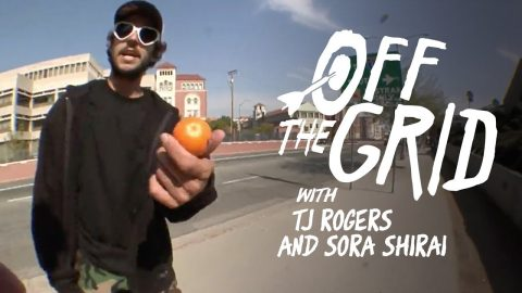 TJ Rogers - Off The Grid | The Berrics
