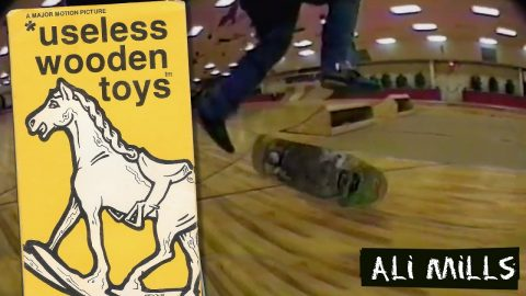 * useless wooden toys: Ali Mills Part | New Deal (1990) | New Deal Skateboards