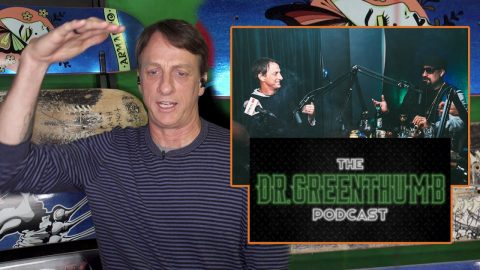 "What Happened To Tony Hawk After Leaving B-Real's Podcast ""Dr. Greenthumb""? 